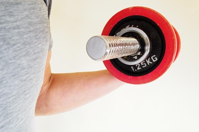お勉強タイム⑦【筋力トレーニング(質の高い筋肉)】