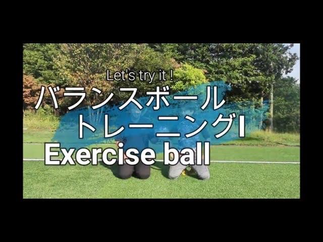 【バランスボール】トレーニングI exercise ball