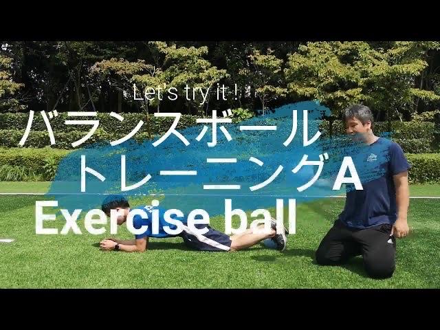 【バランスボール】トレーニングA exercise ball